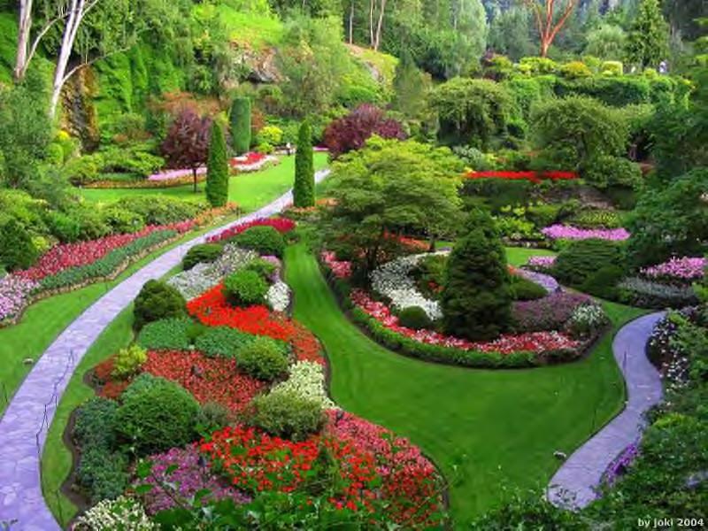 contacto servicios de jardinería
