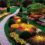creación de jardines nuevos